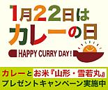 1月22日はカレーの日キャンペーン
